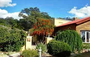 Photo of Spirit Tree Inn Bed and Breakfast Patagonia