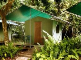 Photo of PK's Jungle Village Cape Tribulation