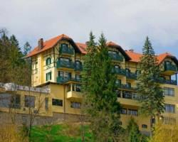 Hotel Triglav Bled