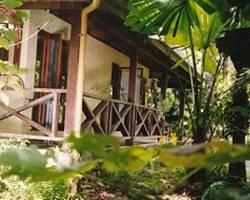 Photo of Daintree Deep Forest Lodge Diwan