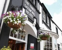Three Salmons Hotel