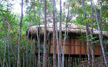 Amazon Tupana Jungle Lodge