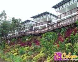 Celyn Resort Kinabalu
