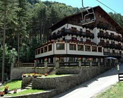 Hotel Mille Pini