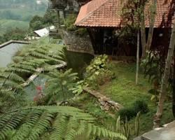Kiara Homestay