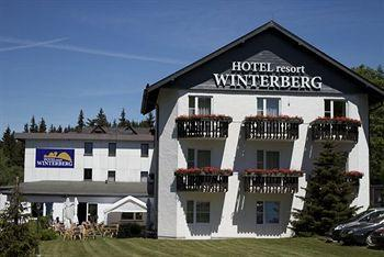 Hotel Winterberg