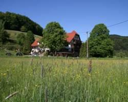 Photo of Hotel Kohlenbacher Hof Waldkirch
