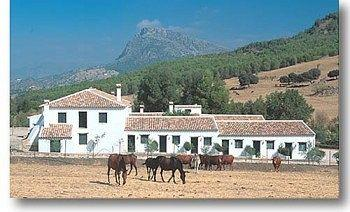 Photo of Hotel El Horcajo Ronda