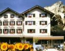 Hotel Alpbach