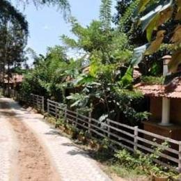 The SilverOaks Resort, Coorg