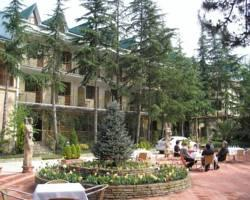 Hotel Olesya
