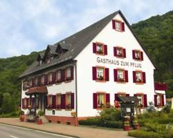 Gasthof zum Pflug