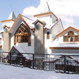 Photo of Hotel Lions Chail