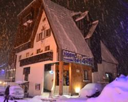 Hotel Des Neiges