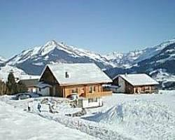 Photo of Chalet Ermina Leysin