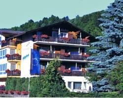 Photo of Hotel Garni Alpha Grächen