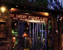 The Forest Resort & Spa