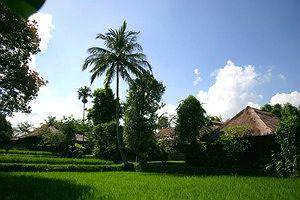 Photo of Ananda Cottages Ubud