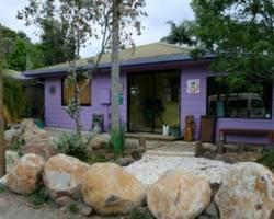Photo of Nimbin Rox Backpackers Resort