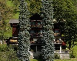Photo of Hotel Sonnenberg Grindelwald