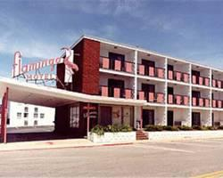 Photo of Flamingo Motel Ocean City