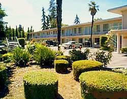 Super 8 Motel Redwood City