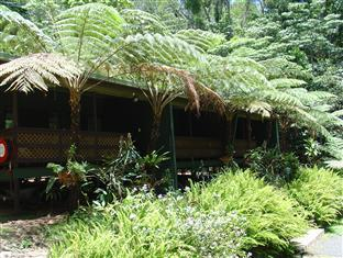 ‪Chambers Wildlife Rainforest Lodges‬