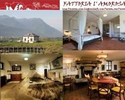 Fattoria Amorosa