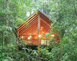 ‪The Canopy Rainforest Treehouses and Wildlife Sanctuary‬