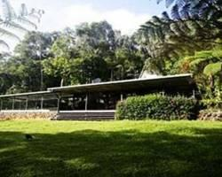 Chambers Wildlife Rainforest Lodges