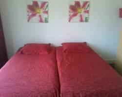 Photo of Maggy&#39;s Bed and Breakfast Amsterdam