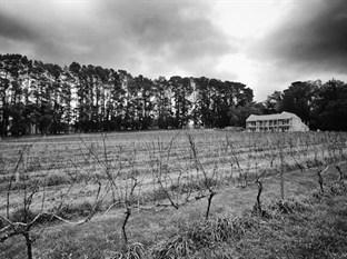 Mantons Creek Estate and Lodge