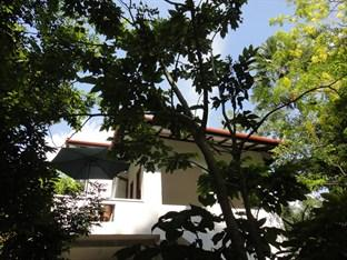 Tropical Tree Villa Galle
