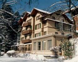 Photo of Hotel Alpenrose Wilderswil