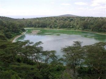 ‪Lake Naivasha Simba Lodge‬