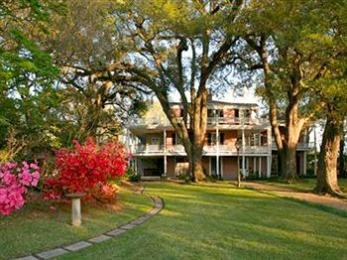 Photo of The Elms Bed And Breakfast Natchez