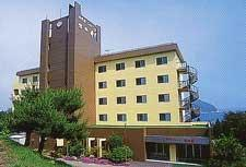 Hotel New Sakai