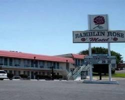‪Ramblin Rose Motel‬