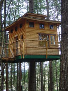 Vertical Horizons Treehouse Paradise
