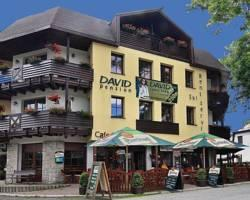 Photo of David Pension Harrachov
