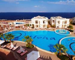 Photo of Aloha Club And Resort Hotel Sharm El-Sheikh