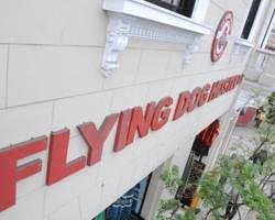 Flying Dog Hostel B&B