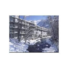 Photo of Chateau Roaring Fork Aspen