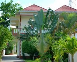 Palm Tree Guest House