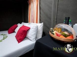 Mahoora Tented Safari Camp Wasgamuwa