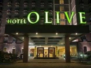 Hotel Olive