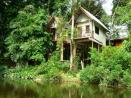 Our Jungle Huts Resort