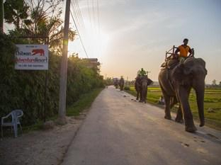 Photo of Chitwan Adventure Resort Sauraha