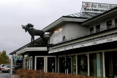 Photo of Big Moose Hotel Asarna
