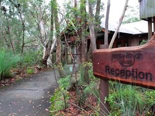 Photo of Jemby-Rinjah Eco Lodge Blackheath